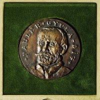 Pauler Gyula-díj